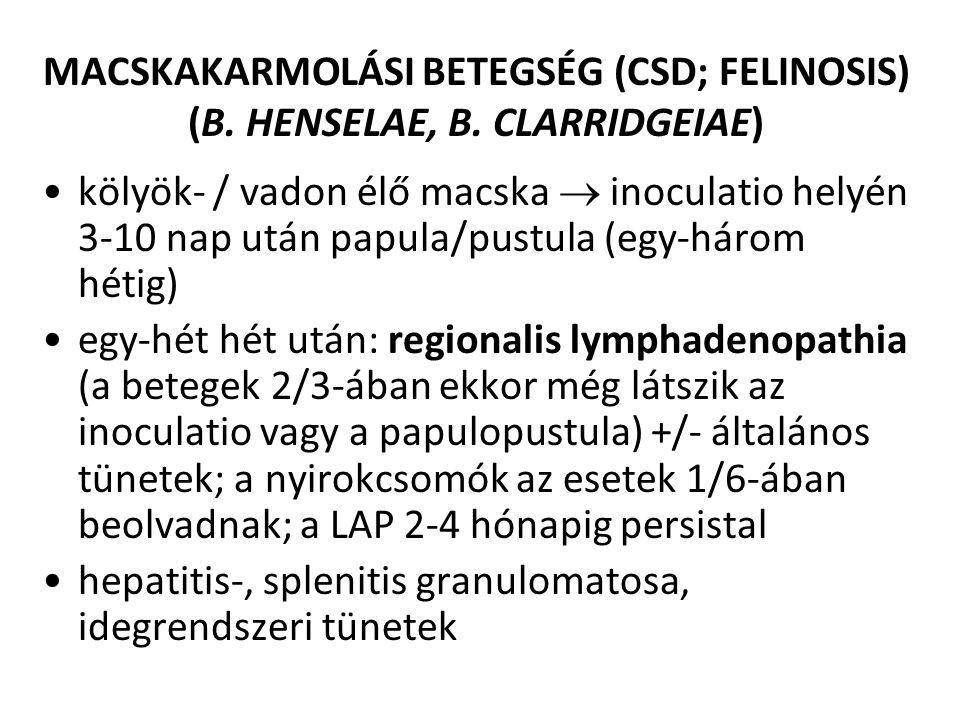 MACSKAKARMOLÁSI BETEGSÉG (CSD; FELINOSIS) (B. HENSELAE, B. CLARRIDGEIAE) kölyök- / vadon élő macska  inoculatio helyén 3-10 nap után papula/pustula (