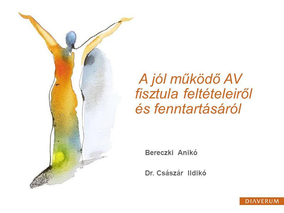 A jól működő AV fisztula feltételeiről és fenntartásáról Bereczki Anikó Dr. Császár Ildikó