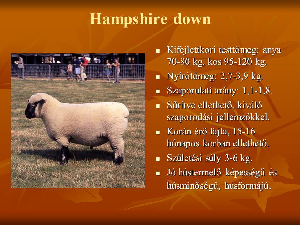 Hampshire down Kifejlettkori testtömeg: anya 70-80 kg, kos 95-120 kg. Kifejlettkori testtömeg: anya 70-80 kg, kos 95-120 kg. Nyírótömeg: 2,7-3,9 kg. N