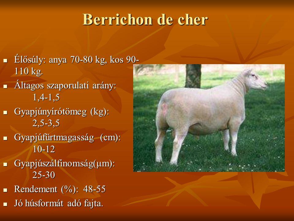 Berrichon de cher Élősúly: anya 70-80 kg, kos 90- 110 kg. Élősúly: anya 70-80 kg, kos 90- 110 kg. Áltagos szaporulati arány: 1,4-1,5 Áltagos szaporula