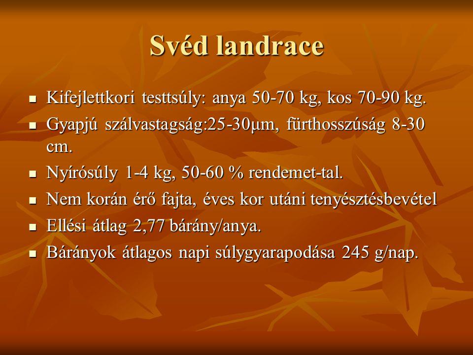 Svéd landrace Kifejlettkori testtsúly: anya 50-70 kg, kos 70-90 kg. Kifejlettkori testtsúly: anya 50-70 kg, kos 70-90 kg. Gyapjú szálvastagság:25-30μm