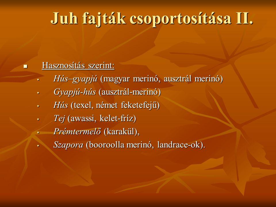 Juh fajták csoportosítása II. Hasznosítás szerint: Hasznosítás szerint: Hús–gyapjú (magyar merinó, ausztrál merinó) Hús–gyapjú (magyar merinó, ausztrá