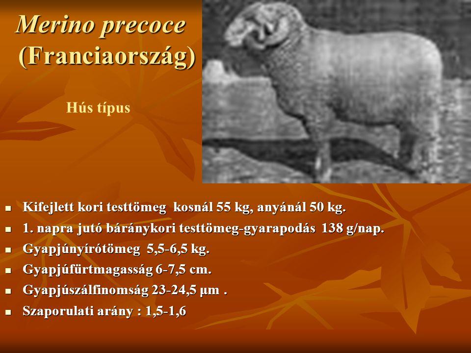 Merino precoce (Franciaország) Kifejlett kori testtömeg kosnál 55 kg, anyánál 50 kg. Kifejlett kori testtömeg kosnál 55 kg, anyánál 50 kg. 1. napra ju