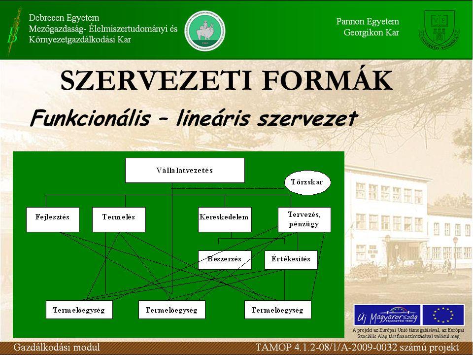 SZERVEZETI FORMÁK Funkcionális – lineáris szervezet