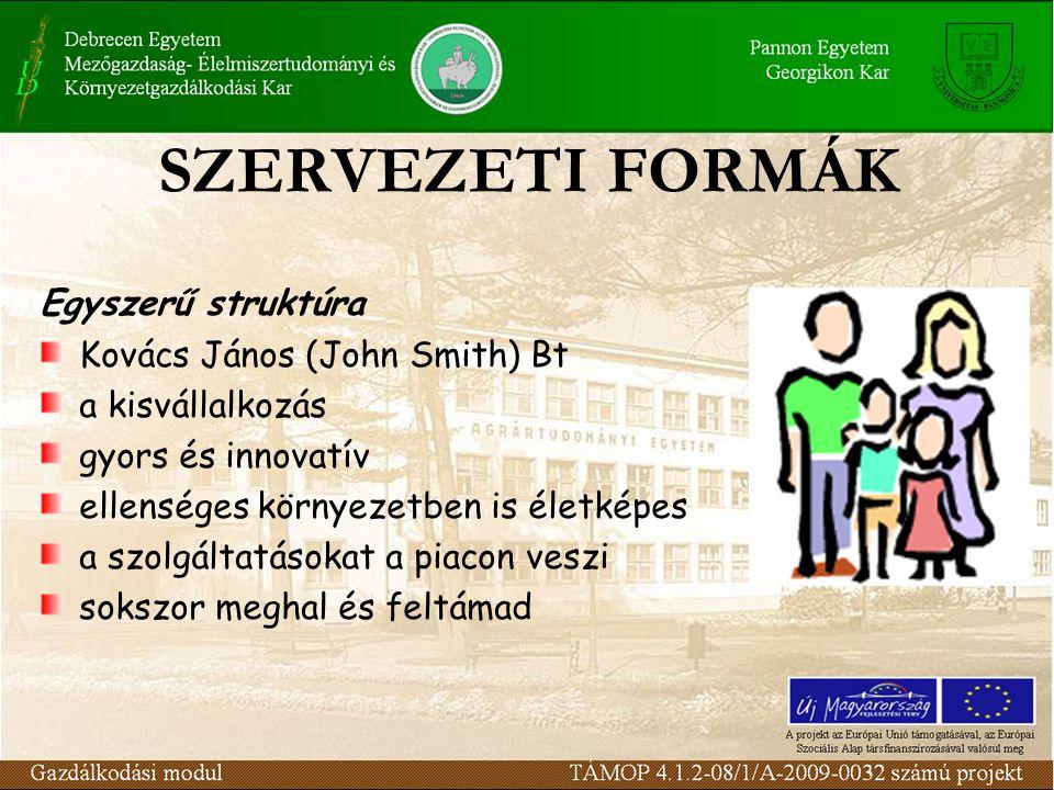 SZERVEZETI FORMÁK Egyszerű struktúra Kovács János (John Smith) Bt a kisvállalkozás gyors és innovatív ellenséges környezetben is életképes a szolgálta