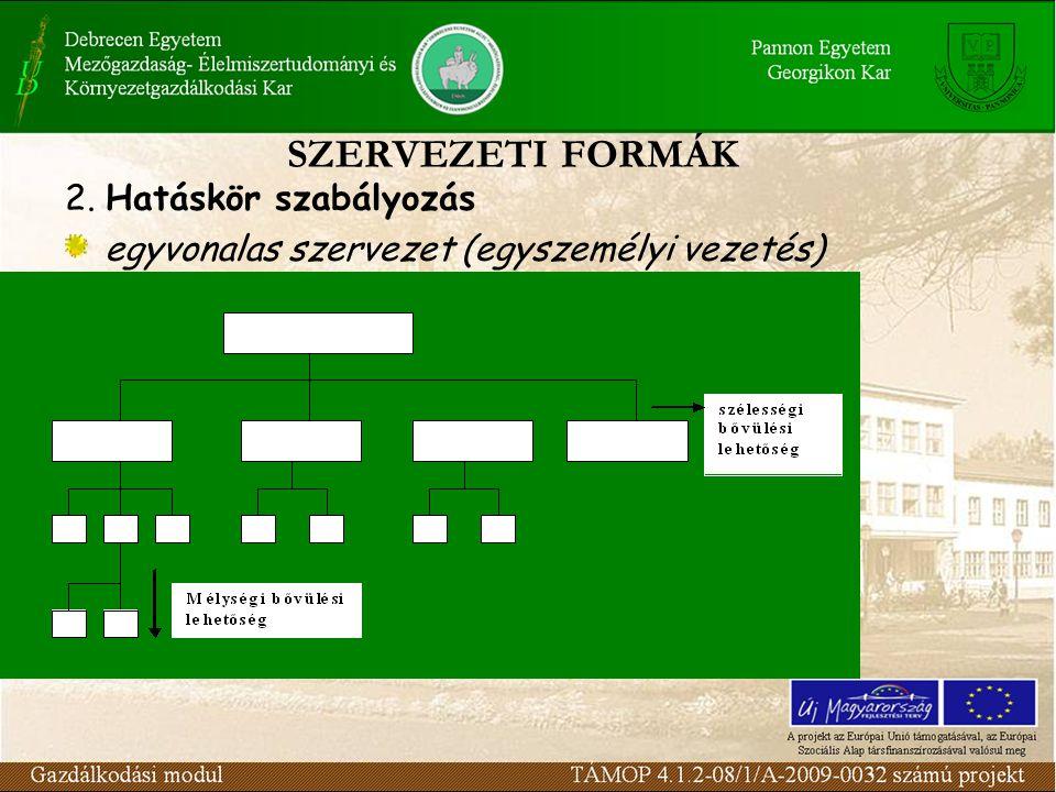 SZERVEZETI FORMÁK 2. Hatáskör szabályozás egyvonalas szervezet (egyszemélyi vezetés)