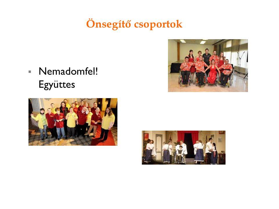 Önsegítő csoportok 10 July, 2014  Nemadomfel! Együttes