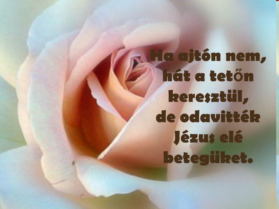 Ha ajtón nem, hát a tet ő n keresztül, de odavitték Jézus elé betegüket.