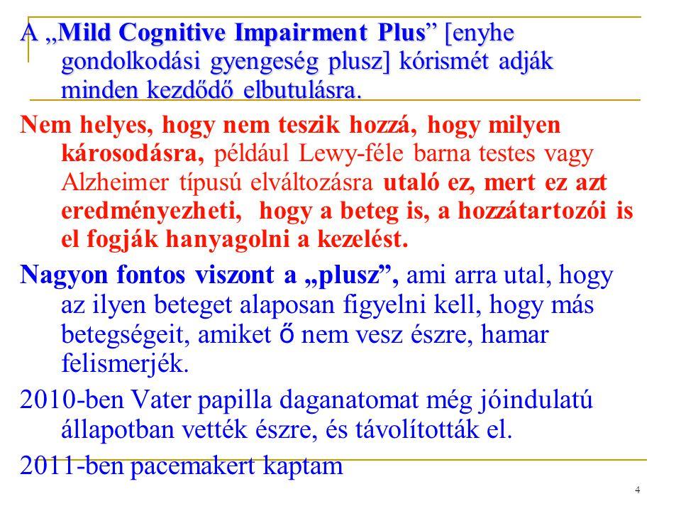 """4 A """"Mild Cognitive Impairment Plus"""" [enyhe gondolkodási gyengeség plusz] kórismét adják minden kezdődő elbutulásra. Nem helyes, hogy nem teszik hozzá"""