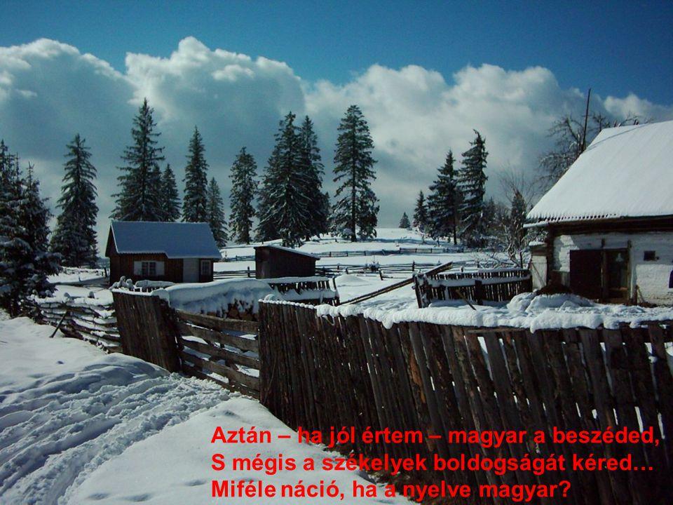 Aztán – ha jól értem – magyar a beszéded, S mégis a székelyek boldogságát kéred… Miféle náció, ha a nyelve magyar?