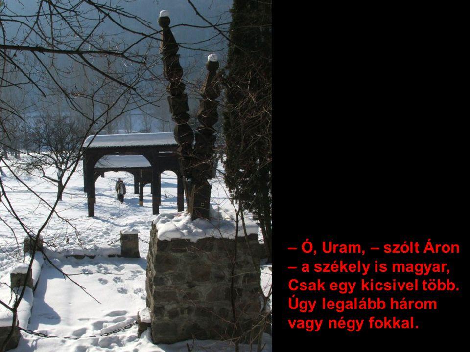 – Ó, Uram, – szólt Áron – a székely is magyar, Csak egy kicsivel több. Úgy legalább három vagy négy fokkal.