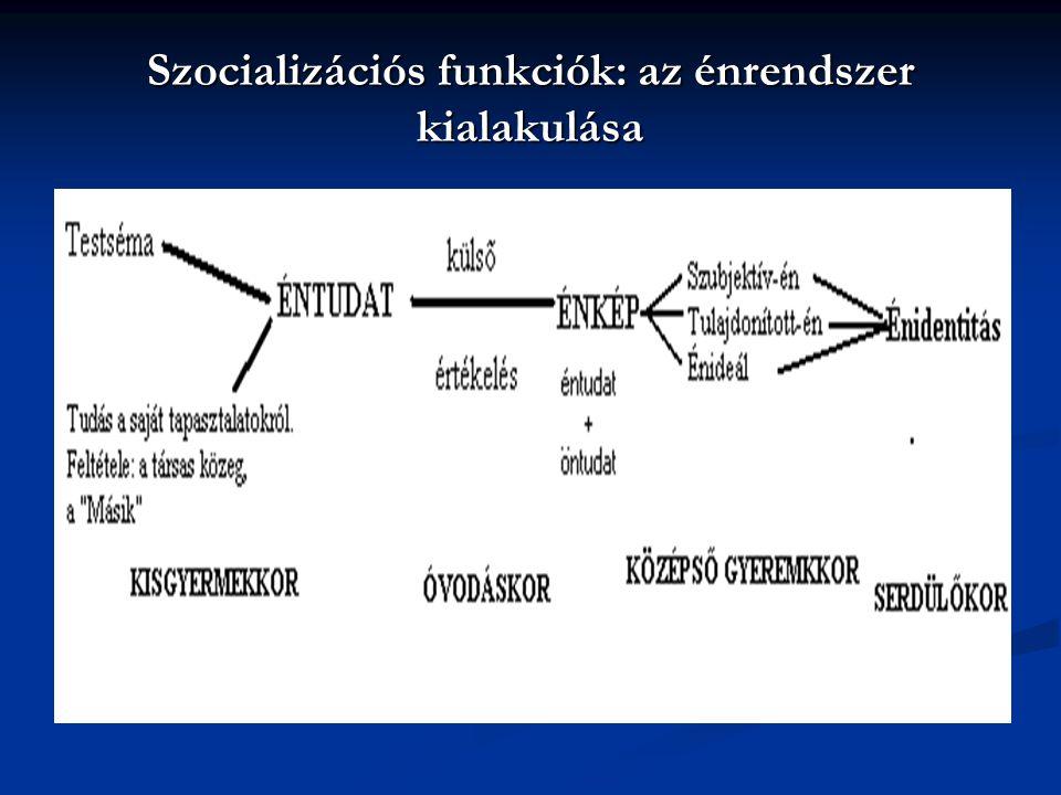 A rendszer működését meghatározó tényezők a szabályrendszer a szabályrendszer a kialakult strukturális jellegzetességek a kialakult strukturális jellegzetességek kommunikációs sémák kommunikációs sémák