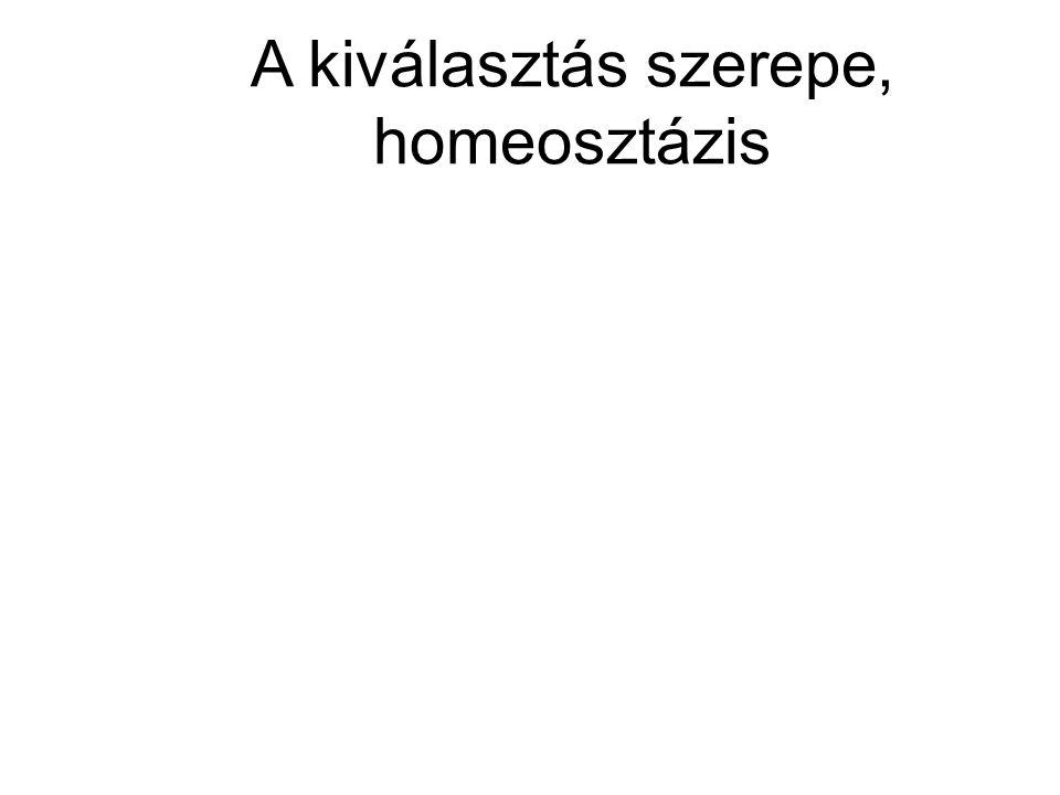 A kiválasztás szerepe, homeosztázis
