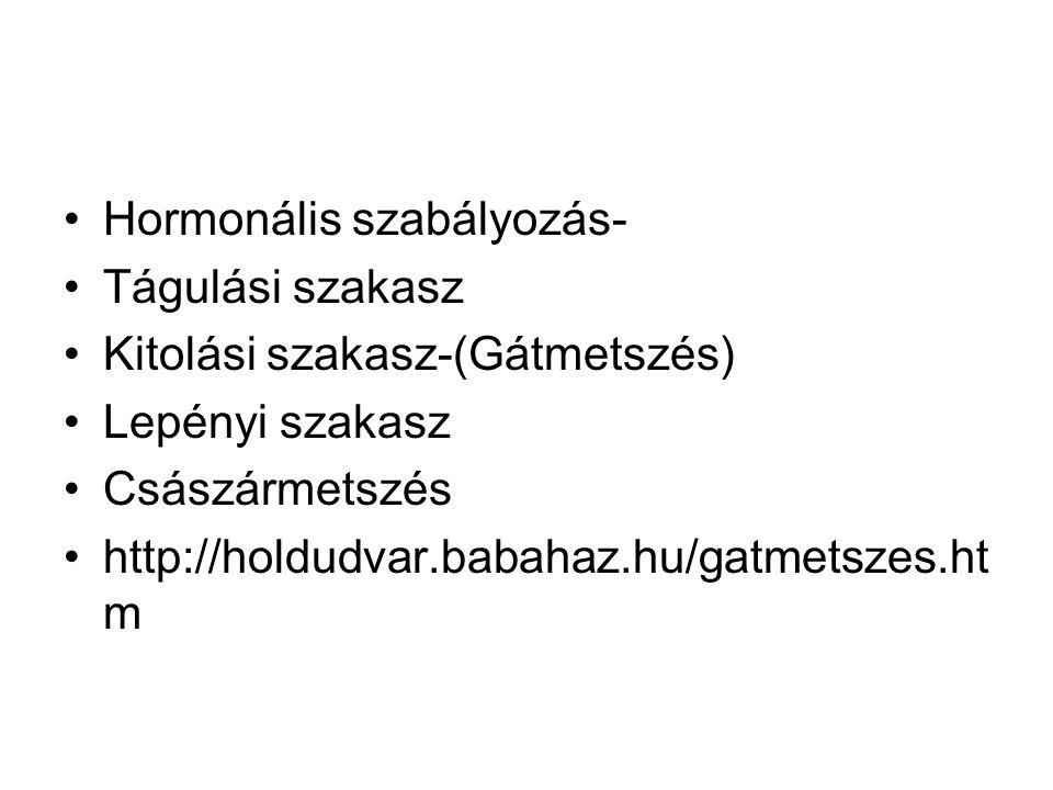 Hormonális szabályozás- Tágulási szakasz Kitolási szakasz-(Gátmetszés) Lepényi szakasz Császármetszés http://holdudvar.babahaz.hu/gatmetszes.ht m