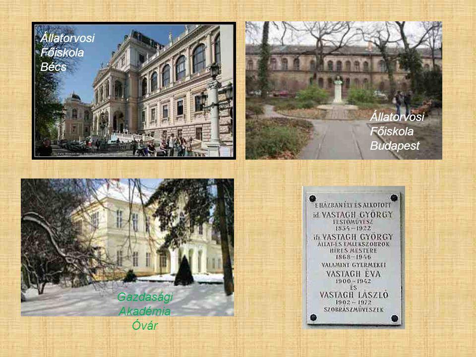 Állatorvosi Főiskola Bécs Állatorvosi Főiskola Budapest Gazdasági Akadémia Óvár