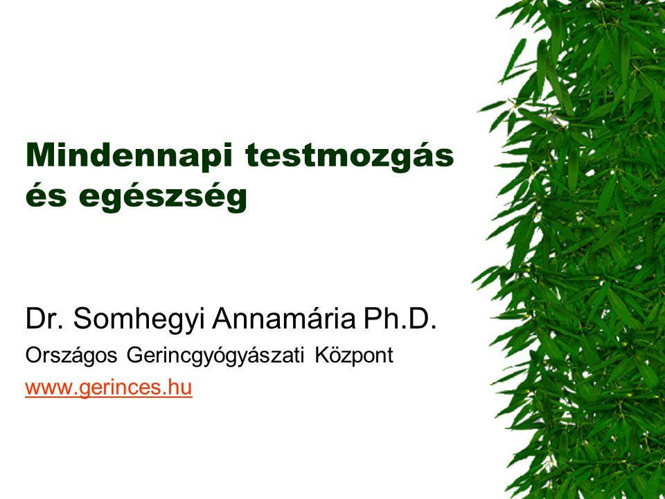 Mindennapi testmozgás és egészség Dr. Somhegyi Annamária Ph.D. Országos Gerincgyógyászati Központ www.gerinces.hu