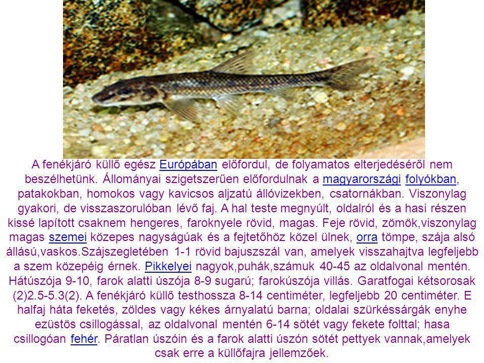 A mocsári teknős csak a vízközelében él. Magyarországon elsősorban a síkvidékek iszapos álló- vagy lassan folydogáló vizeiben él. Kedveli a napsütötte