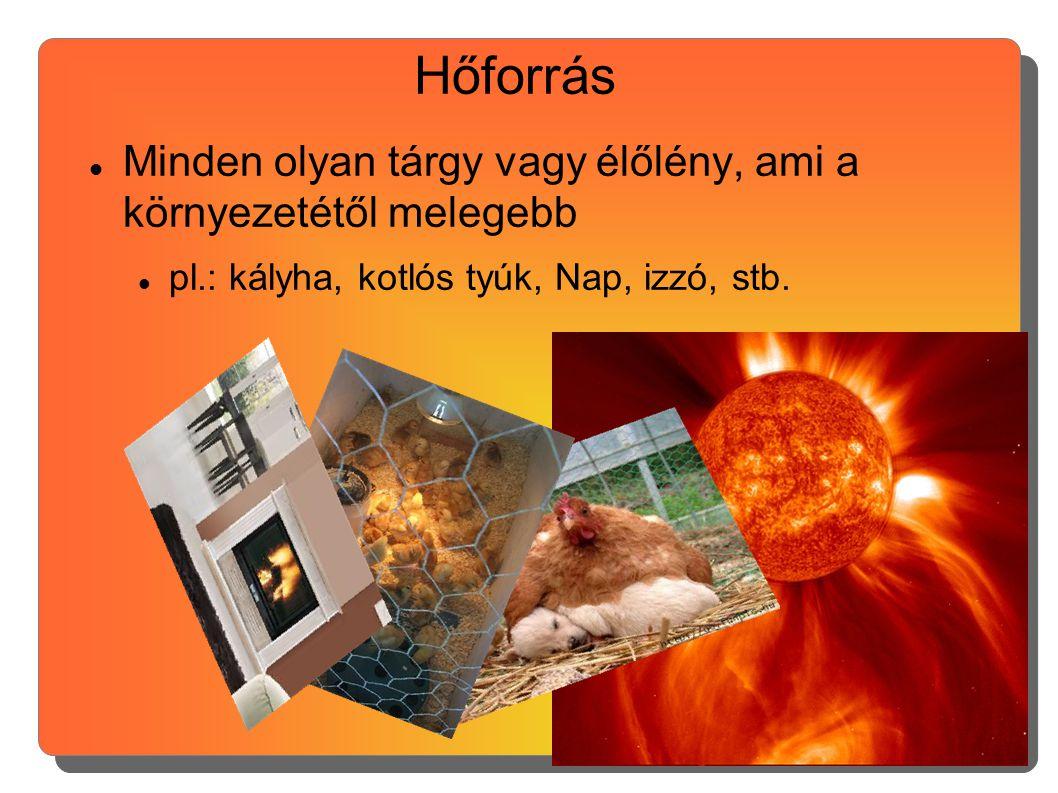 Hőforrás Minden olyan tárgy vagy élőlény, ami a környezetétől melegebb pl.: kályha, kotlós tyúk, Nap, izzó, stb.
