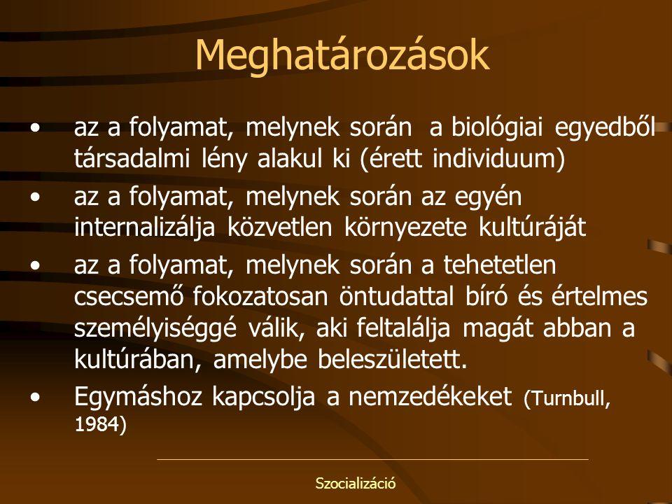 Szocializáció További szakirodalom *Szabóné Kármán Judit: Családi és iskolai szocializáció eltérő vonásai a roma gyermek életében http://www.mave.hu/ *Kiss T.