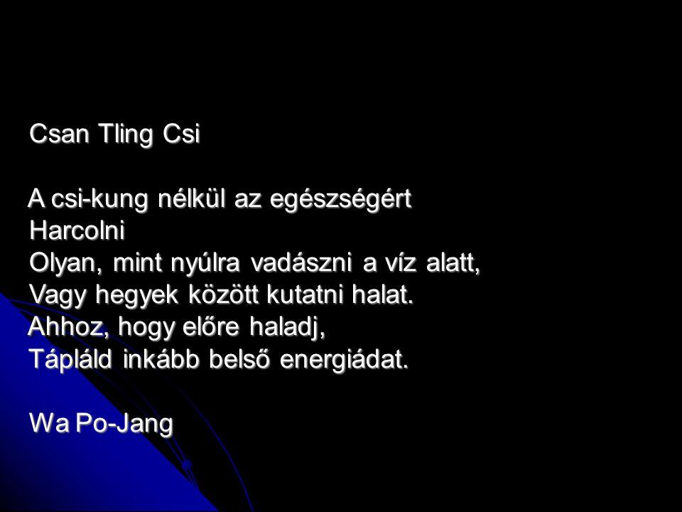 Csan Tling Csi Csan Tling Csi A csi-kung nélkül az egészségért A csi-kung nélkül az egészségért Harcolni Harcolni Olyan, mint nyúlra vadászni a víz al