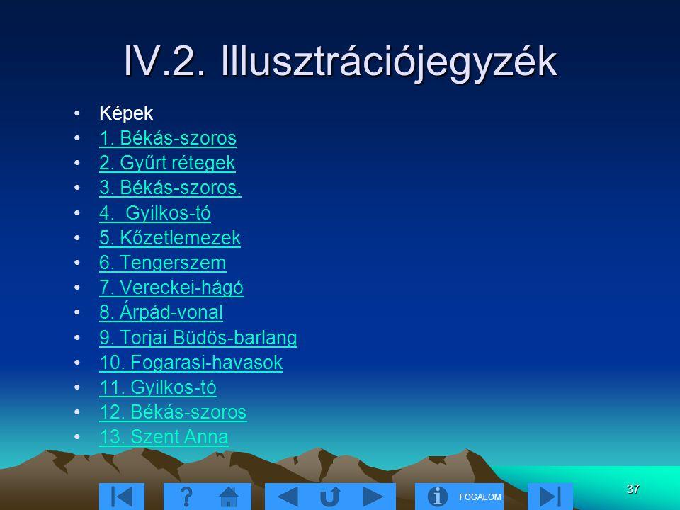 FOGALOM 37 IV.2. Illusztrációjegyzék Képek 1. Békás-szoros 2. Gyűrt rétegek 3. Békás-szoros. 4. Gyilkos-tó 5. Kőzetlemezek 6. Tengerszem 7. Vereckei-h
