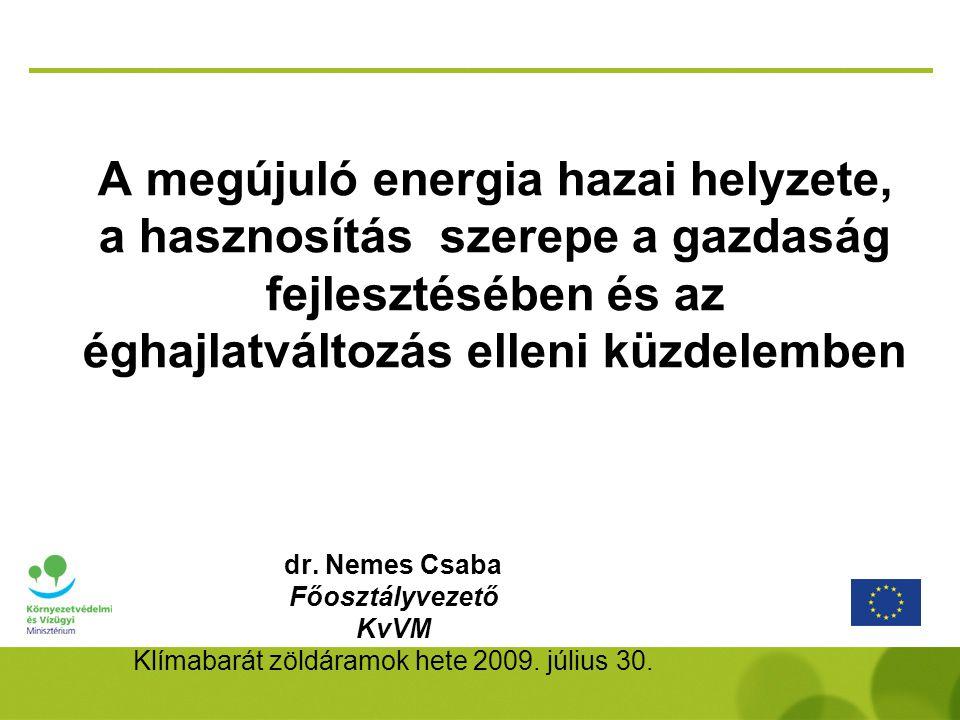 A megújuló energiaforrások használatának növelése A megújuló energiát azonban környezeti szempontból is FENNTARTHATÓ módon kell termelni, a természetes környezet állapotának megóvásával, nagyobb fokú degradációjának elkerülésével (főleg biomassza termelés esetén) A hagyományos energia növekvő ára és a klímavédelmi szabályozás (növekvő kvóta ár, csökkenő országos kibocsátási lehetőség) miatt gazdaságossága nő