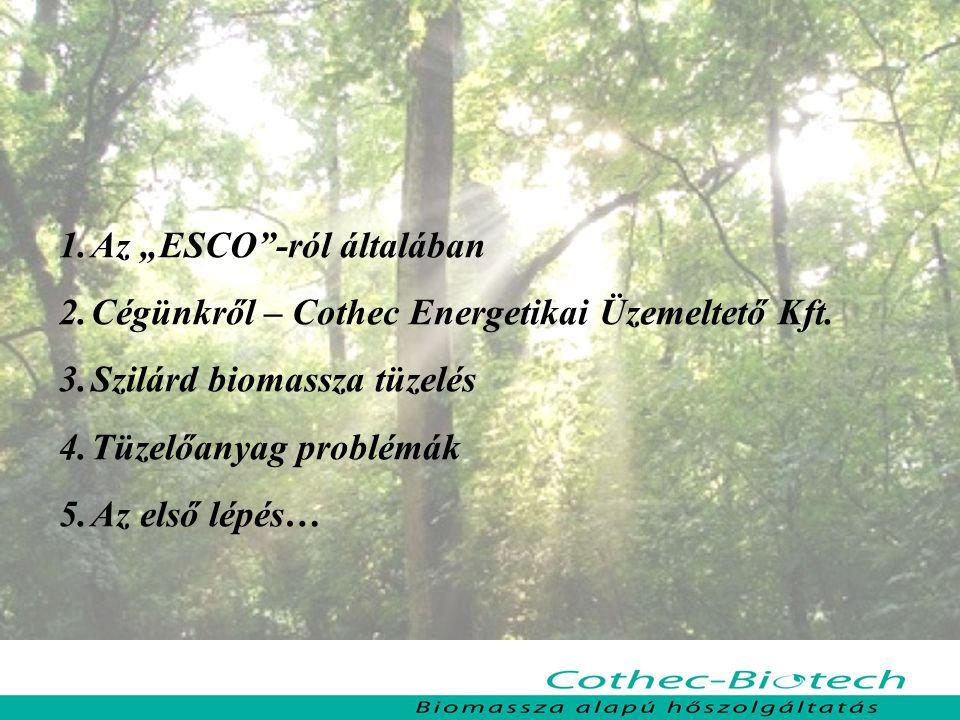 Cothec – Biotech Biomassza alapú hőszolgáltatás Faapríték tüzelésű rendszerek Nagyobb önkormányzati intézmények esetében, 200 kW teljesítmény igény felett Előnyei: jól illeszthető a meglévő szekunder rendszerekhez tüzelőanyag árfekvése alacsony tüzelőanyag minőségre kevésbe érzékeny Jellemzői: fajlagos beruházási költsége közepes-magas tüzelőanyag tárolás helyigénye nagy tüzelőanyag gépi mozgatást igényel