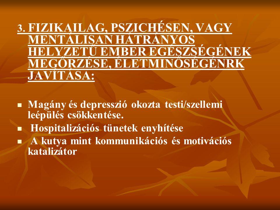 3. FIZIKAILAG, PSZICHÉSEN, VAGY MENTÁLISAN HÁTRÁNYOS HELYZETŰ EMBER EGÉSZSÉGÉNEK MEGŐRZÉSE, ÉLETMINŐSÉGÉNRK JAVÍTÁSA: Magány és depresszió okozta test