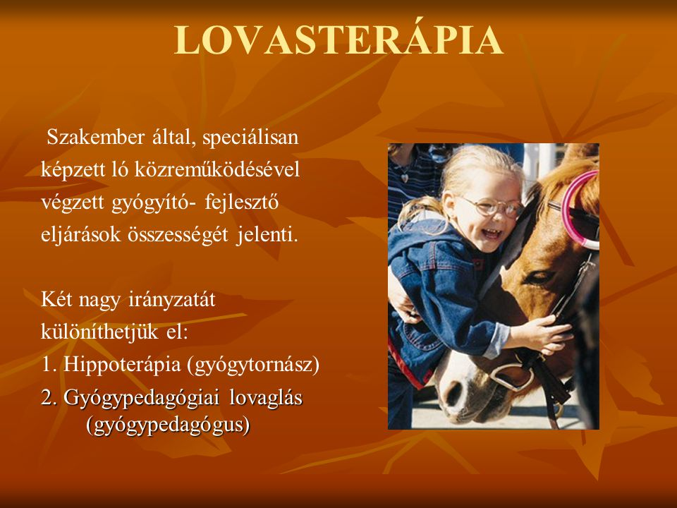 LOVASTERÁPIA Szakember által, speciálisan képzett ló közreműködésével végzett gyógyító- fejlesztő eljárások összességét jelenti. Két nagy irányzatát k