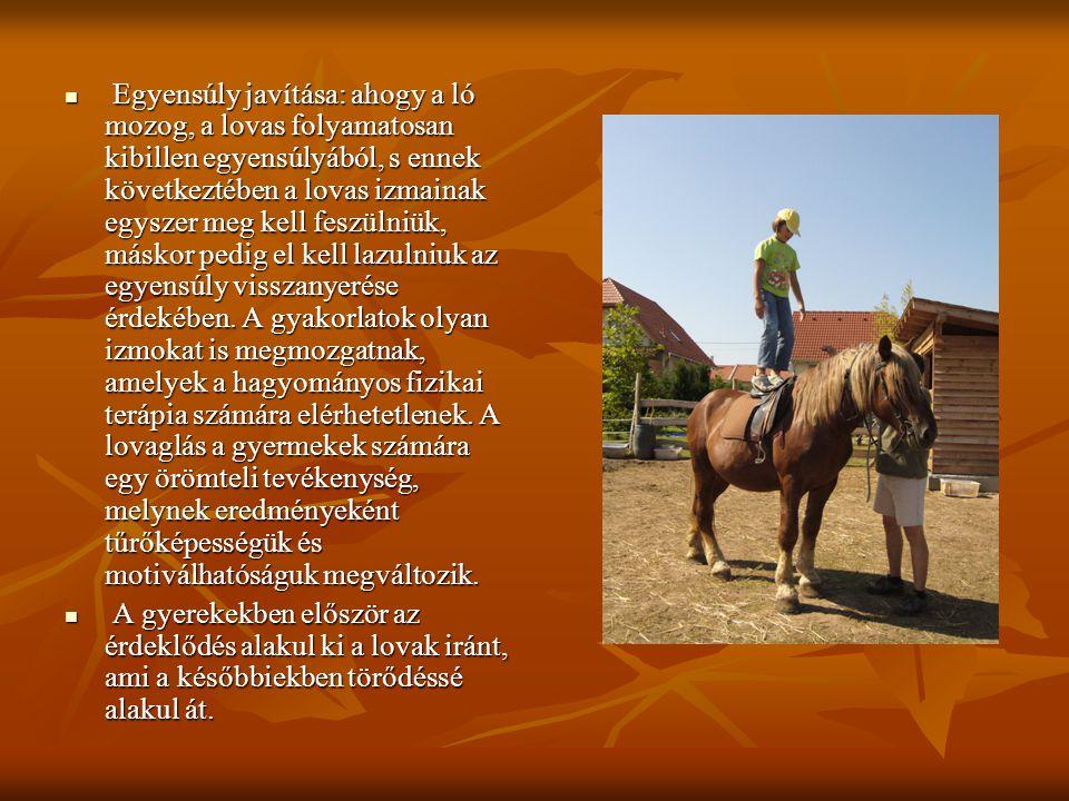 Egyensúly javítása: ahogy a ló mozog, a lovas folyamatosan kibillen egyensúlyából, s ennek következtében a lovas izmainak egyszer meg kell feszülniük,