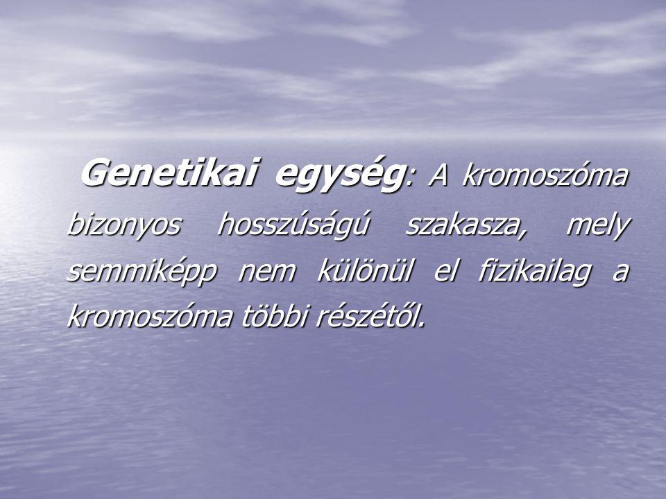 Genetikai egység : A kromoszóma bizonyos hosszúságú szakasza, mely semmiképp nem különül el fizikailag a kromoszóma többi részétől. Genetikai egység :