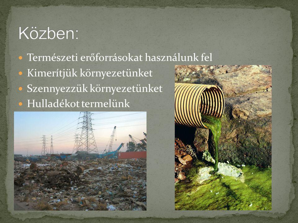 Természeti erőforrásokat használunk fel Kimerítjük környezetünket Szennyezzük környezetünket Hulladékot termelünk