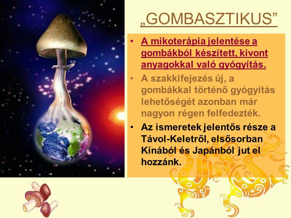 """""""GOMBASZTIKUS"""" A mikoterápia jelentése a gombákból készített, kivont anyagokkal való gyógyítás. A szakkifejezés új, a gombákkal történő gyógyítás lehe"""