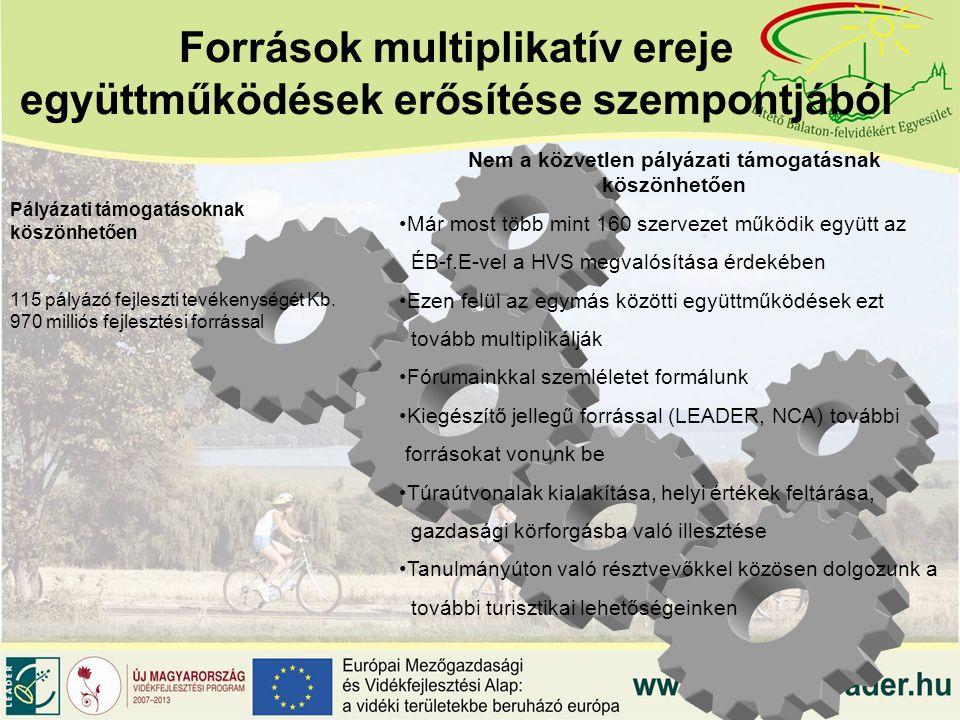 Források multiplikatív ereje együttműködések erősítése szempontjából Pályázati támogatásoknak köszönhetően 115 pályázó fejleszti tevékenységét Kb.