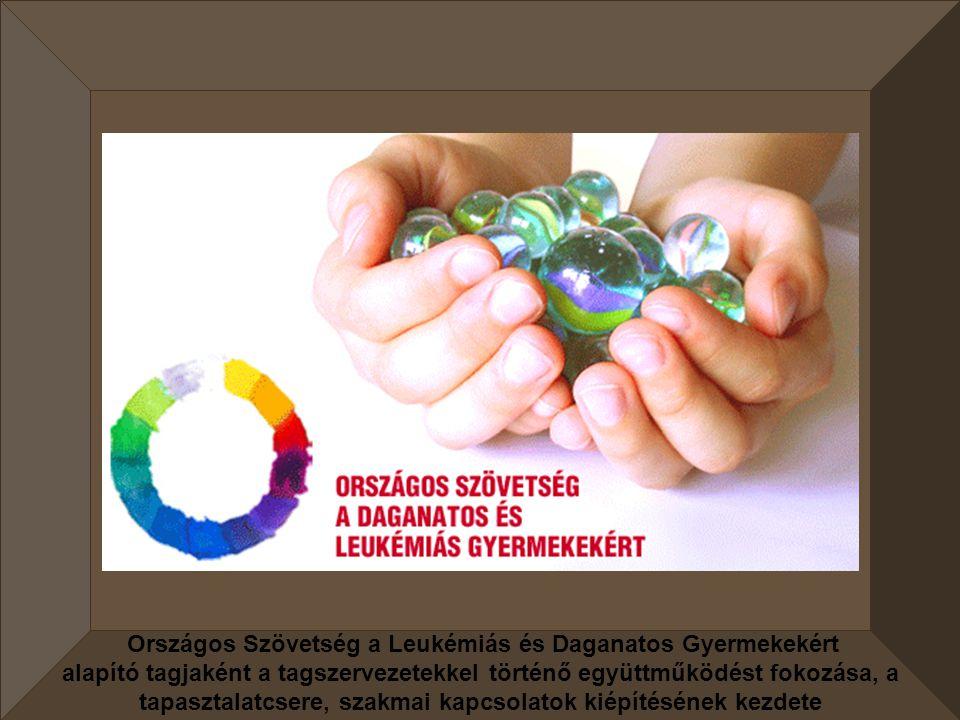 Mozgáskorlátozottak Sárospataki és Zemplén térségi Egyesülete Abylimpia rendezvényének támogatása és részvétel.