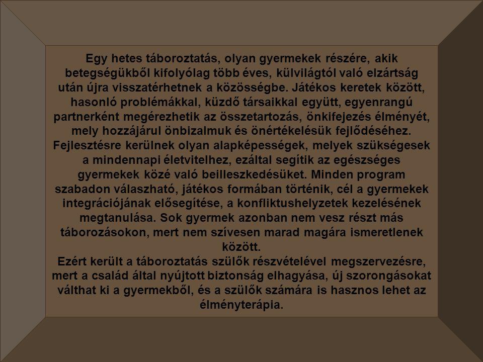 I. Nemzetközi, Élményterápiás és Rehabilitációs Tábor Sárospatak 2008.06.23.-29.