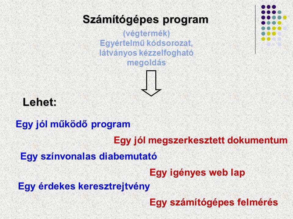 Számítógépes program (végtermék) Egyértelmű kódsorozat, látványos kézzelfogható megoldás Lehet: Egy jól működő program Egy színvonalas diabemutató Egy