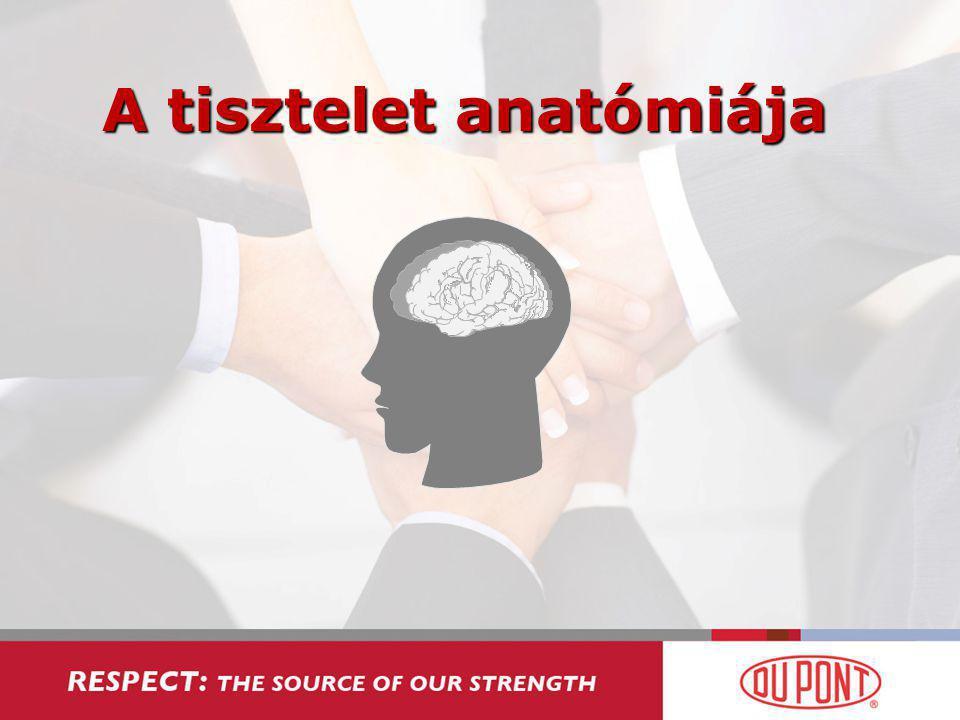 A tisztelet anatómiája