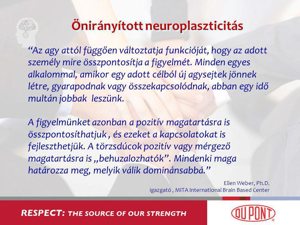 Önirányított neuroplaszticitás Az agy attól függően változtatja funkcióját, hogy az adott személy mire összpontosítja a figyelmét.