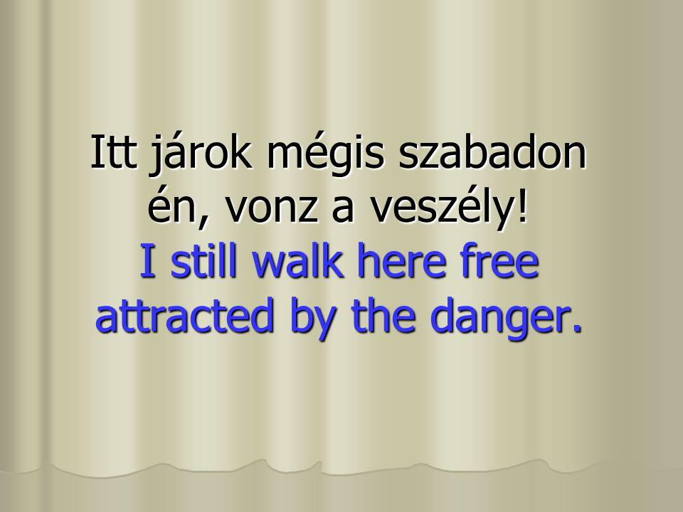 Itt járok mégis szabadon én, vonz a veszély! I still walk here free attracted by the danger.