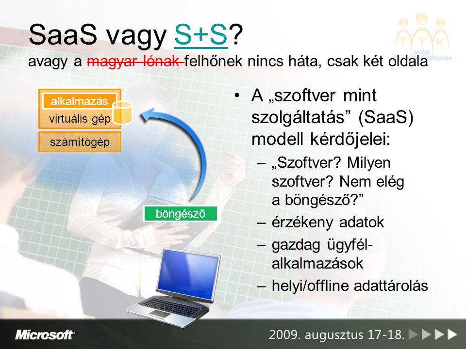 SaaS vagy S+S.