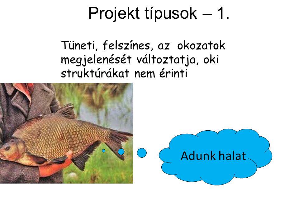 Projekt típusok – 1. Adunk halat Tüneti, felszínes, az okozatok megjelenését változtatja, oki struktúrákat nem érinti