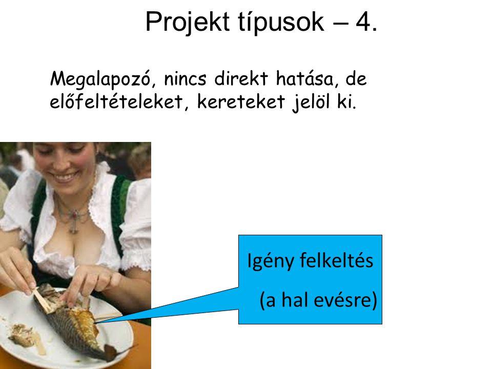 Projekt típusok – 4. Igény felkeltés (a hal evésre) Megalapozó, nincs direkt hatása, de előfeltételeket, kereteket jelöl ki.