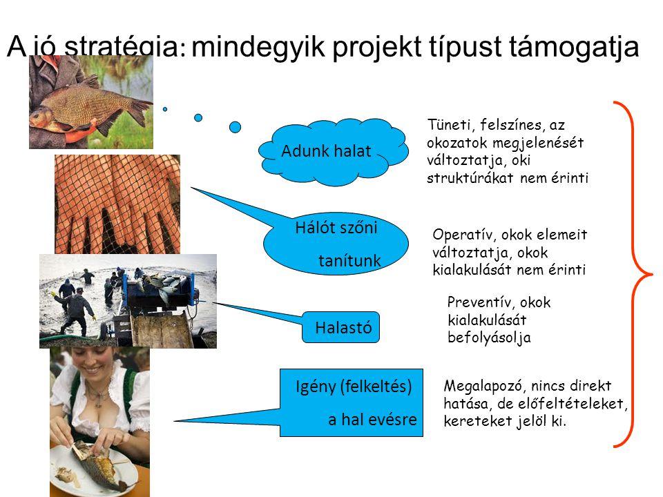 A jó stratégia : mindegyik projekt típust támogatja Adunk halat Hálót szőni tanítunk Halastó Igény (felkeltés) a hal evésre Tüneti, felszínes, az okoz
