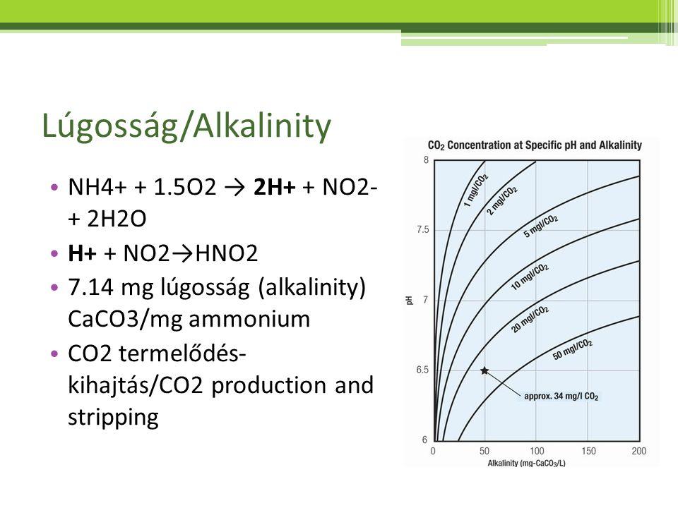 Lúgosság/Alkalinity NH4+ + 1.5O2 → 2H+ + NO2- + 2H2O H+ + NO2→HNO2 7.14 mg lúgosság (alkalinity) CaCO3/mg ammonium CO2 termelődés- kihajtás/CO2 produc