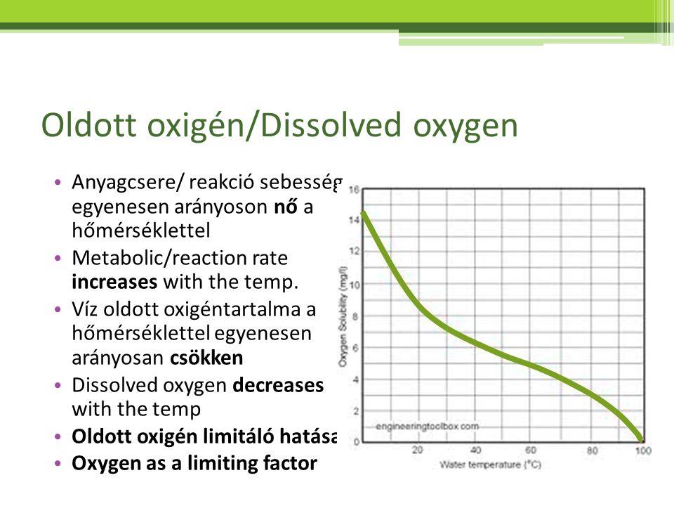 Oldott oxigén/Dissolved oxygen Anyagcsere/ reakció sebesség egyenesen arányoson nő a hőmérséklettel Metabolic/reaction rate increases with the temp. V