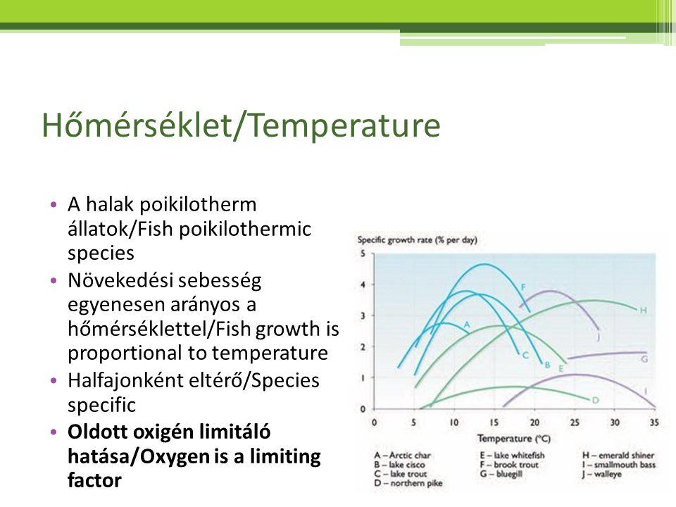 Hőmérséklet/Temperature Eltávolítási sebesség egyenesen arányos a hőmérséklettel/Removal rate is proportional to temperature Oldott oxigén limitáló hatása/Oxygen is a limiting factor