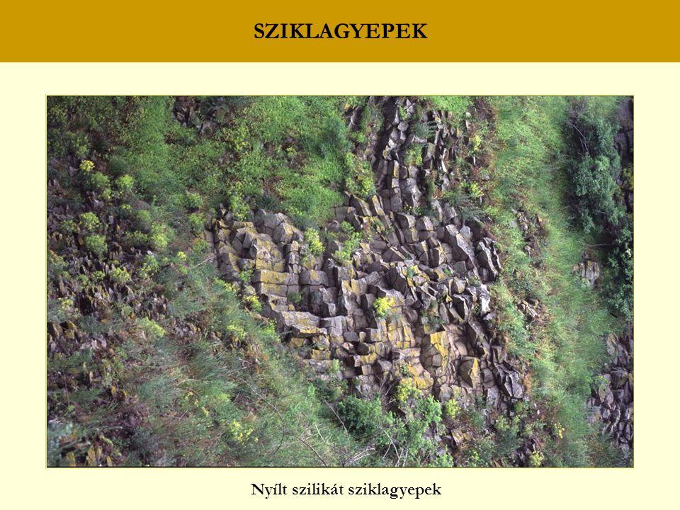 SZIKLAGYEPEK Nyílt szilikát sziklagyepek