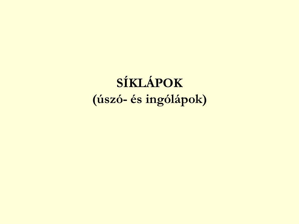 SÍKLÁPOK (úszó- és ingólápok)