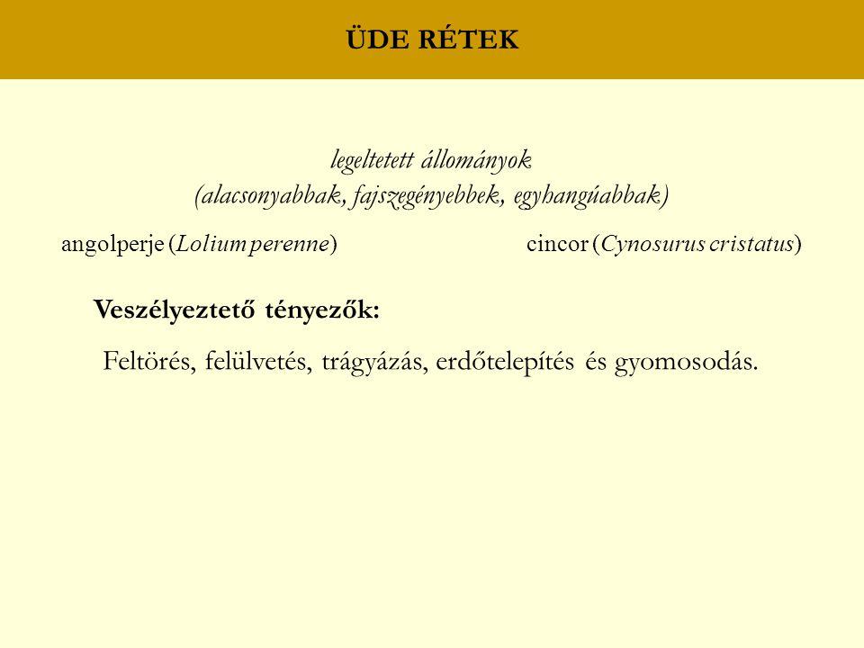 ÜDE RÉTEK legeltetett állományok (alacsonyabbak, fajszegényebbek, egyhangúabbak) angolperje (Lolium perenne) cincor (Cynosurus cristatus) Veszélyeztet